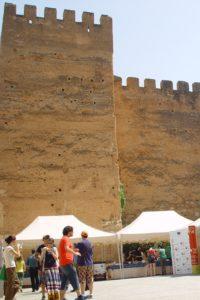 Degustación de Torta del Casar en el Foro de los Balbos de Cáceres (Archivo D.O.P.)